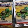 โปรแคงเกอร์ สารกำจัดและป้องกันโรคแคงเกอร์ในมะนาว