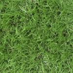หญ้าเทียม GL-X425E สีเขียวสามสี(1x2เมตร)