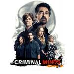 DVD Criminal Minds : The Complete 12th Season ทีมแกร่งเด็ดขั้วอาชญากรรม (อ่านเกมอาชญากร) (ปี 12) 5 แผ่นจบ (ซับไทย)