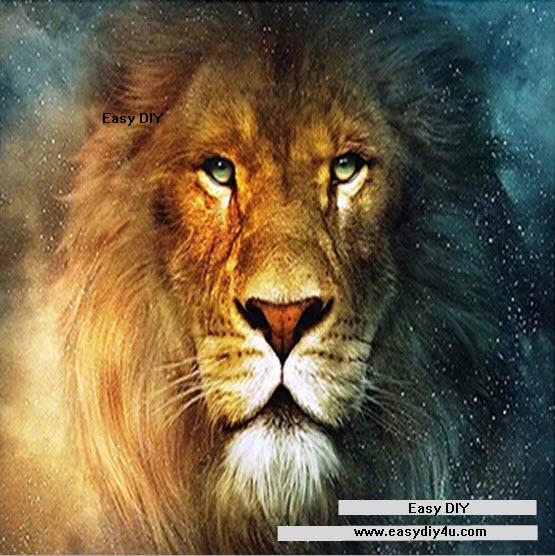 สิงโตเจ้าป่า 1