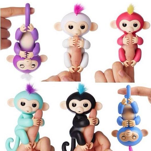 ลิงเกาะนิ้ว Fingerlings Baby Monkeys เกรด AA
