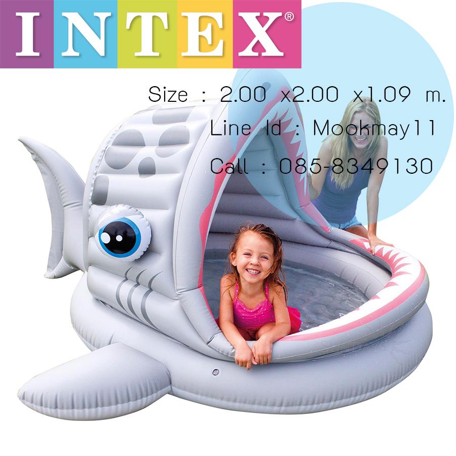 Intex Roarin' Shark Shade Pool สระน้ำเด็กปลาฉลาม 57120