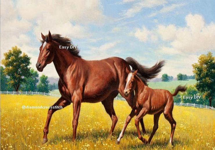 ม้าแม่ลูก 2