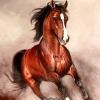 อุปกรณ์งานฝีมือ DIY ครอสติสคริสตัลรูปม้าคึกคัก ทำง่ายสวยหรู