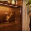 """สุดยอดที่วีแห่งอนาคต พานาโซนิคเปิดตัว """"ทีวีโปร่งใส"""""""