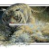 เสือขาว 1