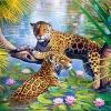 เสือดาวคู่