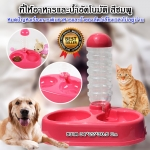 P-895 ที่ให้อาหารและน้ำอัตโนมัติ สำหรับสุนัขและแมว ถาดใส่อาหาร ที่ให้อาหารสุนัข ที่ให้อาหารแมว ชามอาหารสุนัข เครื่องให้อาหารสุนัข เครื่องให้อาหารแมว (สีชมพู)