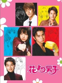 DVD Boys Over Flowers (JP) / Hana Yori Dango / F4 ญี่ปุ่น (Season 1+2+Special in New York+The Movie) รักใสใส หัวใจเต็มร้อย (รักใสหัวใจเกินร้อย) 13 แผ่นจบ (Master ซับไทย)