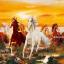 ม้าแปดตัวท้องฟ้าสีทอง thumbnail 1