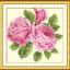 ดอกไม้แสนสวย (ภาพละ 300 บาท) thumbnail 4