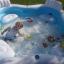 Intex Pool Center สระน้ำเป่าลมครอบครัว 56475+แถมสูบไฟฟ้า thumbnail 7