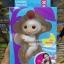 ลิงเกาะนิ้ว Fingerlings Baby Monkeys เกรด AA thumbnail 8