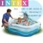 Intex Summer Colour Pool สระน้ำรูปดาว 56495 (Blue)+สูบไฟฟ้า thumbnail 1