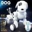 Smart Pet หุ่นยนต์สุนัขบังคับวิทยุ RC/ Dog thumbnail 4