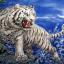 เสือขาวแยกเขี้ยว thumbnail 1